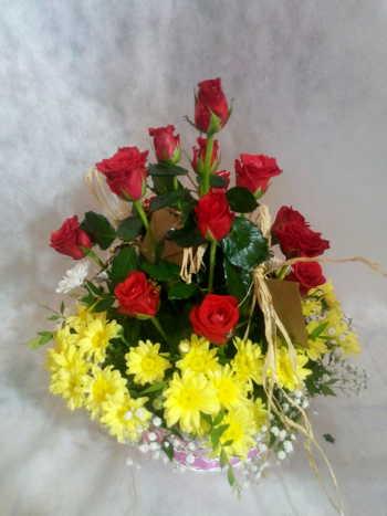 Sarı Papatya ve güller