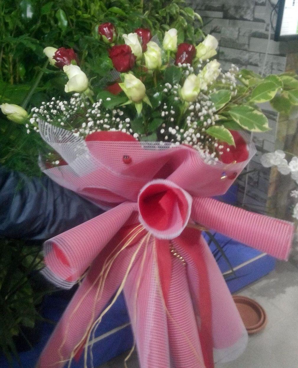 Kýrmýzý Beyaz güller